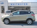 2013 Ginger Ale Metallic Ford Escape SEL 2.0L EcoBoost 4WD #77961650