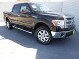 2013 Kodiak Brown Metallic Ford F150 XLT SuperCrew 4x4 #77961400