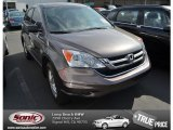 2010 Urban Titanium Metallic Honda CR-V EX #78023290