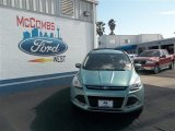 2013 Frosted Glass Metallic Ford Escape SE 1.6L EcoBoost #78023071