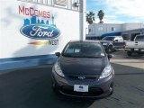 2013 Violet Gray Ford Fiesta SE Hatchback #78023065