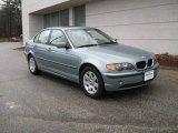 2002 Grey Green Metallic BMW 3 Series 325xi Sedan #7799907