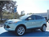 2013 Frosted Glass Metallic Ford Escape Titanium 2.0L EcoBoost #78023116