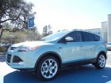 2013 Frosted Glass Metallic Ford Escape Titanium 2.0L EcoBoost #78023110