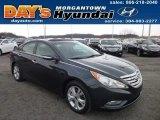 2013 Pacific Blue Pearl Hyundai Sonata Limited #78076693