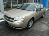 2005 Light Driftwood Metallic Chevrolet Malibu Sedan #78076146