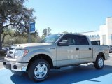 2013 Pale Adobe Metallic Ford F150 XLT SuperCrew #78076253