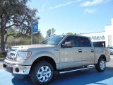 2013 Pale Adobe Metallic Ford F150 XLT SuperCrew #78076250