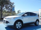 2013 Ingot Silver Metallic Ford Escape SE 1.6L EcoBoost #78076247