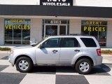 2009 Brilliant Silver Metallic Ford Escape XLT V6 #78122106