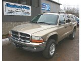 2004 Light Almond Pearl Metallic Dodge Dakota SLT Quad Cab 4x4 #78214005