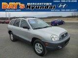 2004 Pewter Hyundai Santa Fe LX 4WD #78214278