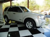 2009 White Suede Ford Escape XLT V6 #78375527