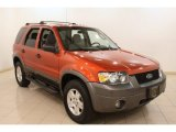 2006 Blazing Copper Metallic Ford Escape XLT V6 4WD #78461783