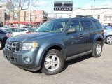 2010 Steel Blue Metallic Ford Escape XLT V6 4WD #78461979