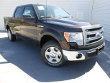 2013 Kodiak Brown Metallic Ford F150 XLT SuperCrew #78461574