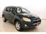 2010 Black Forest Pearl Toyota RAV4 Limited 4WD #78550410
