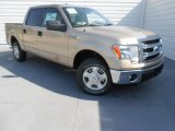 2013 Pale Adobe Metallic Ford F150 XLT SuperCrew #78550257