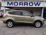 2013 Ginger Ale Metallic Ford Escape SE 1.6L EcoBoost 4WD #78584664