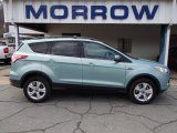 2013 Frosted Glass Metallic Ford Escape SE 1.6L EcoBoost 4WD #78584662