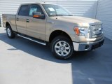 2013 Pale Adobe Metallic Ford F150 XLT SuperCrew 4x4 #78584811