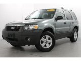 2006 Titanium Green Metallic Ford Escape Hybrid #78697958
