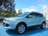 2013 Frosted Glass Metallic Ford Escape SEL 1.6L EcoBoost #78763897