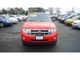 2009 Torch Red Ford Escape XLT V6 4WD #7858438