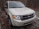2009 Light Sage Metallic Ford Escape XLT V6 4WD #78763806