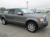 2010 Sterling Grey Metallic Ford F150 Platinum SuperCrew 4x4 #78824680