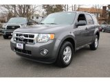 2011 Sterling Grey Metallic Ford Escape XLT #78852122