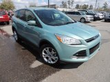 2013 Frosted Glass Metallic Ford Escape SEL 2.0L EcoBoost #78880192