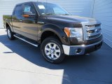 2013 Kodiak Brown Metallic Ford F150 XLT SuperCrew 4x4 #78880115