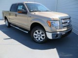 2013 Pale Adobe Metallic Ford F150 XLT SuperCrew #78880112