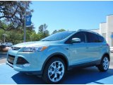 2013 Frosted Glass Metallic Ford Escape Titanium 2.0L EcoBoost #78939663