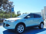2013 Frosted Glass Metallic Ford Escape SEL 2.0L EcoBoost #78939656