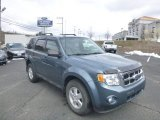 2010 Steel Blue Metallic Ford Escape XLT 4WD #78939711