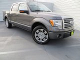 2010 Sterling Grey Metallic Ford F150 Platinum SuperCrew #78996533