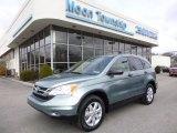 2011 Opal Sage Metallic Honda CR-V SE 4WD #78996492