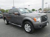 2010 Sterling Grey Metallic Ford F150 FX4 SuperCrew 4x4 #79058463