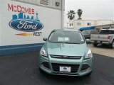 2013 Frosted Glass Metallic Ford Escape SE 1.6L EcoBoost #79058452