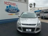 2013 Ingot Silver Metallic Ford Escape SE 1.6L EcoBoost #79058450