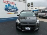2013 Tuxedo Black Metallic Ford Escape SE 2.0L EcoBoost #79058432