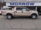 2013 Pale Adobe Metallic Ford F150 XLT SuperCrew 4x4 #79058528