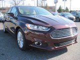 2013 Bordeaux Reserve Red Metallic Ford Fusion Hybrid SE #79158067