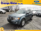 2010 Steel Blue Metallic Ford Escape XLT V6 4WD #79157901