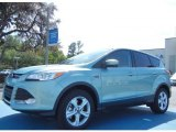 2013 Frosted Glass Metallic Ford Escape SE 2.0L EcoBoost #79200120