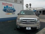 2013 Pale Adobe Metallic Ford F150 XLT SuperCrew #79263261