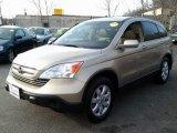 2007 Borrego Beige Metallic Honda CR-V EX-L 4WD #79371757