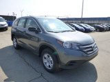2013 Polished Metal Metallic Honda CR-V LX AWD #79371887